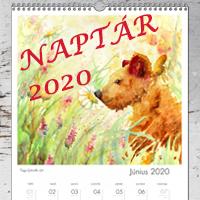 Falinaptár 2020