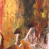 Őszi gombák